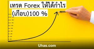 เทรด Forex ได้กำไร 100%